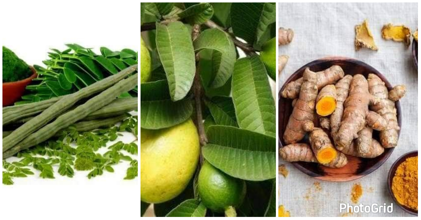 Home remedies for staphylococcus infection