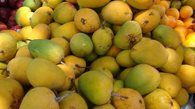 10 Health Benefits of Eating Mangoes
